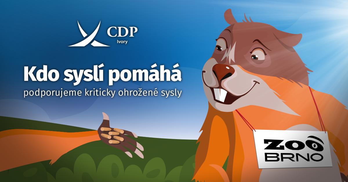 CDP - 1200x628 - Sysel.psd (1)