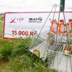 Brněnští sysli děkují, CDP Ivory nasyslilo 15 tisíc korun