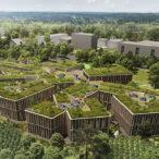 Své sídlo budou Lesy ČR vytápět dřevenými peletami