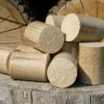 Dřevěné brikety a pelety – proč přejít na ekologická paliva?