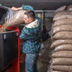 Z českého dřeva se loni vyrobilo 377 tisíc tun pelet. Oboru by prospělo snížení DPH na 10 %